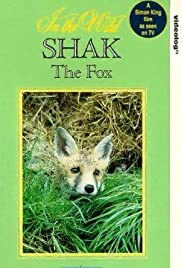 Shak the Red Fox